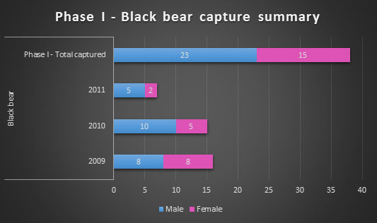 Black bear capture summary