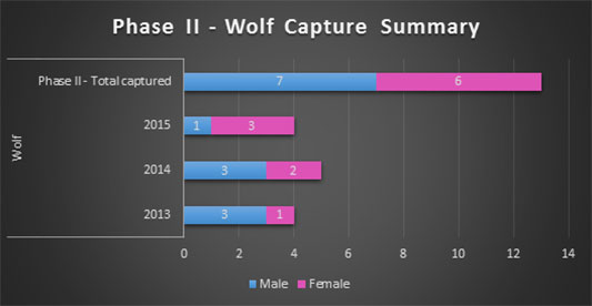 Wolf Capture Summary